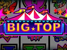 Большой Топ от Microgaming - играть в азартную игру